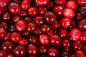 Winter Fruits that Fight Cold and Flu, Seekyt