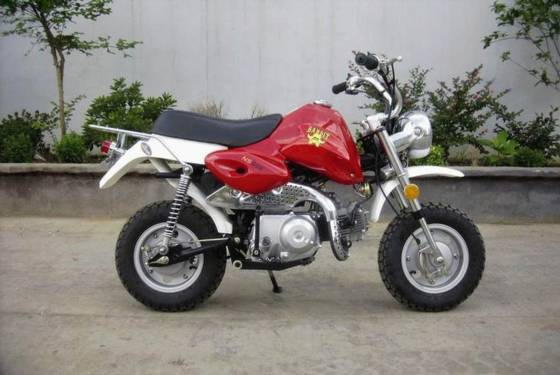 How to Find Used Mini Motorcycles for Sale Cheap, Seekyt