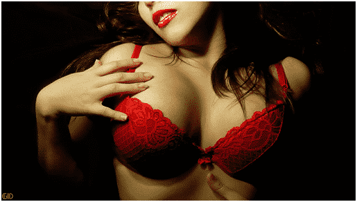 3 Things to Look for When Buying a Bra, Seekyt
