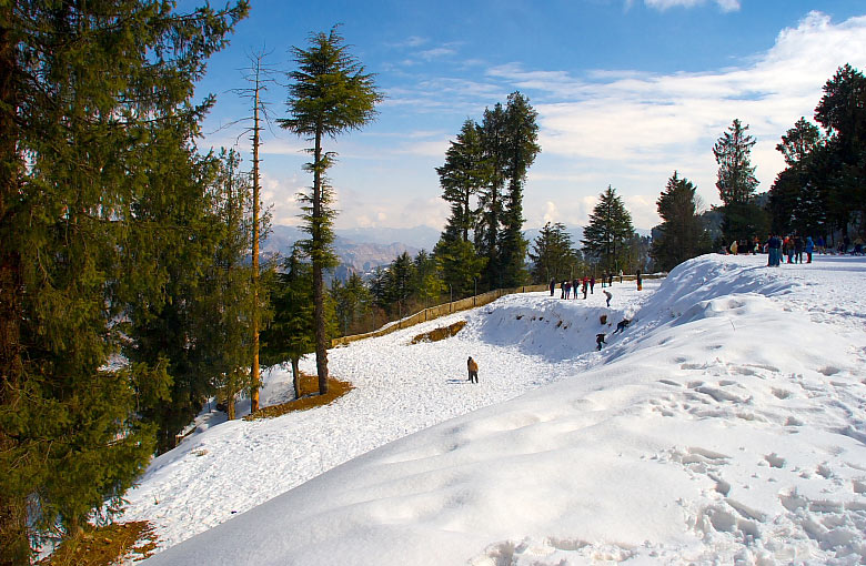 Kufri – a hill town perched in the Himalayas perfect for adventure holidays
