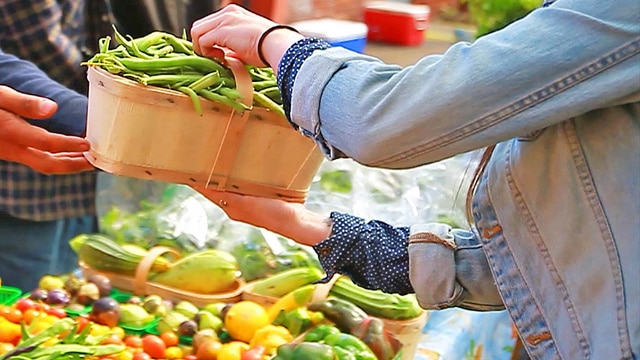 Organic Marketplace – The Heritage Has Become Our Future, Seekyt