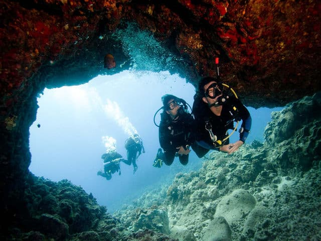 How To Become A Competent Dive Instructor?, Seekyt
