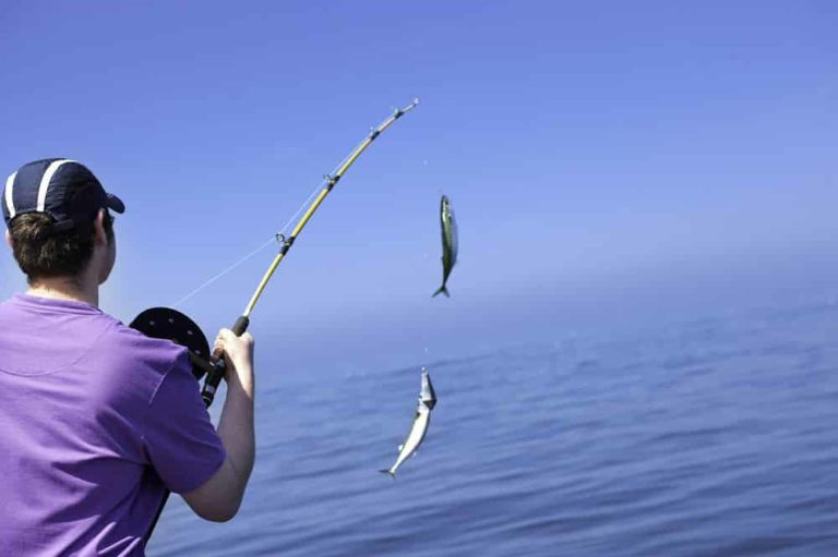 Hunting A Fish To Make The Holiday Unforgetable