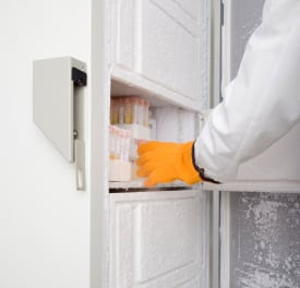 Improve Your Business with a Commercial Ice Maker, Seekyt