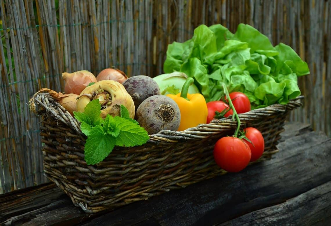 Why Should You Eat a Balanced and Healthy Diet?