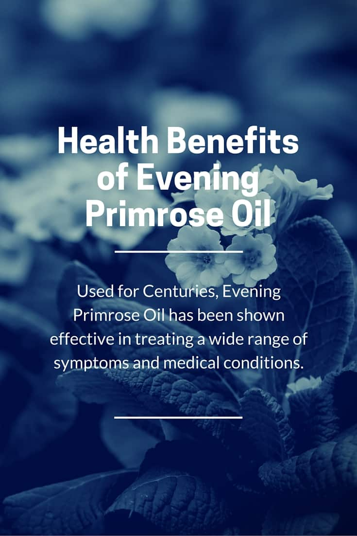 Evening Primrose Oil Benefits for Health, Seekyt